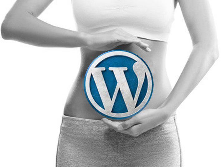SEO in WordPress Angebo